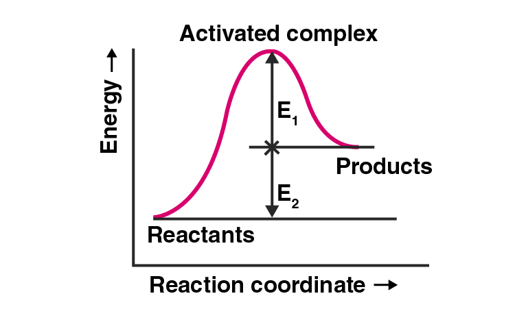 NCERT Exemplar Solutions of Class 12 Chemistry Chapter 4 Chemical Kinetics-1