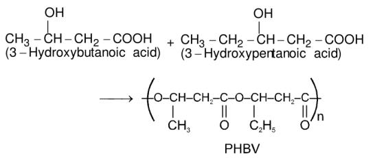 Poly beta hydroxybutyrate-co-beta-hydroxyvalerate - PHBV
