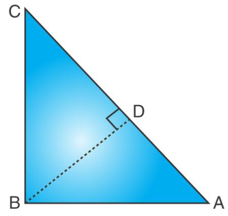 PSEB class 10 maths 2017 (A) solution 16(b)