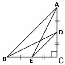 PSEB class 10 maths 2018 (C) solution 19(b)