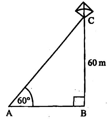 PSEB class 10 maths 2019 question 22
