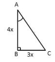 PSEB class 10 maths 2019 solution 21 (b)