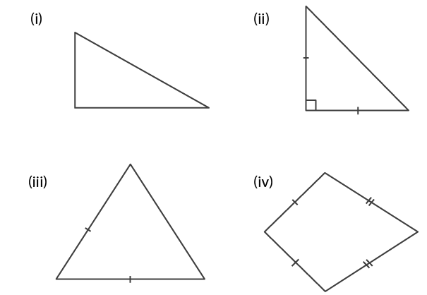 Selina Solutions Concise Mathematics Class 6 Chapter 30 - 3