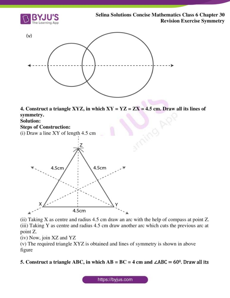 selina solutions for concise mathematics class 6 chapter 30 04