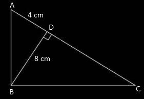 TN class 10 maths 2017 solution 10