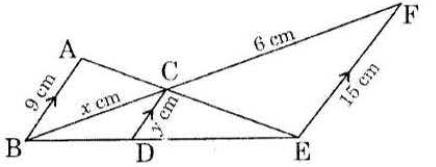 TS SSC class 10 maths 2015 paper 2 question 13