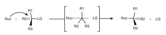 Walden Inversion Mechanism
