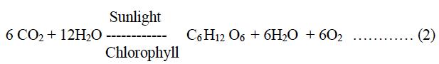 ICSE Class 10 Biology Qs Paper 2015 Solution-3