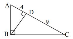 MSBSHSE 2019 paper II question 3(B) i