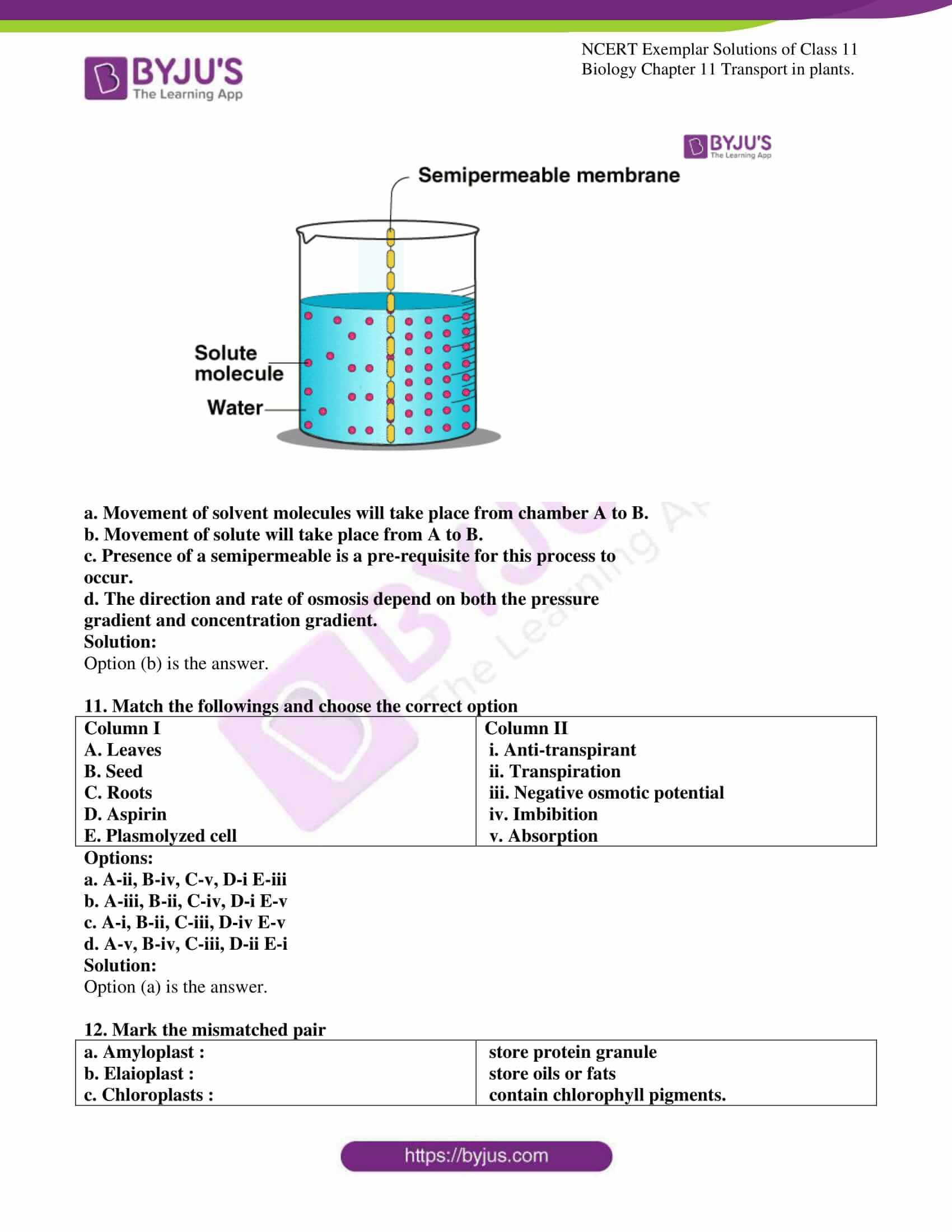 ncert exemplar solutions for class 11 bio chapter 11 03