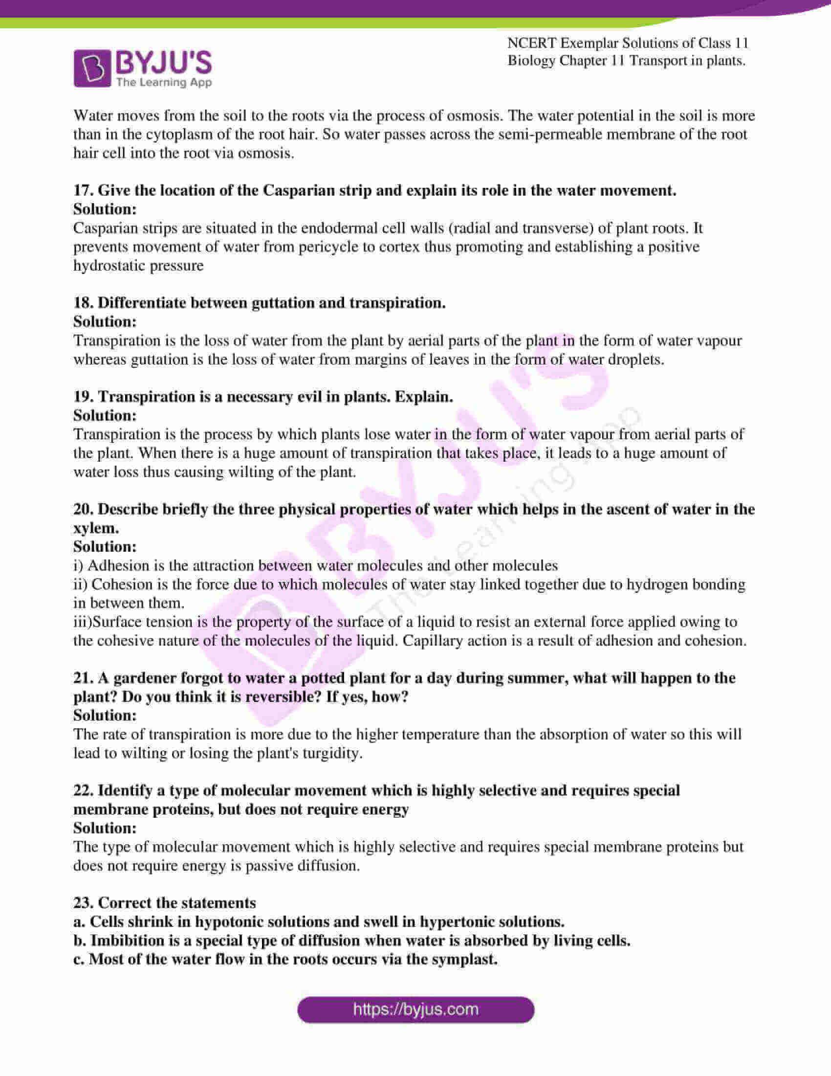 ncert exemplar solutions for class 11 bio chapter 11 07