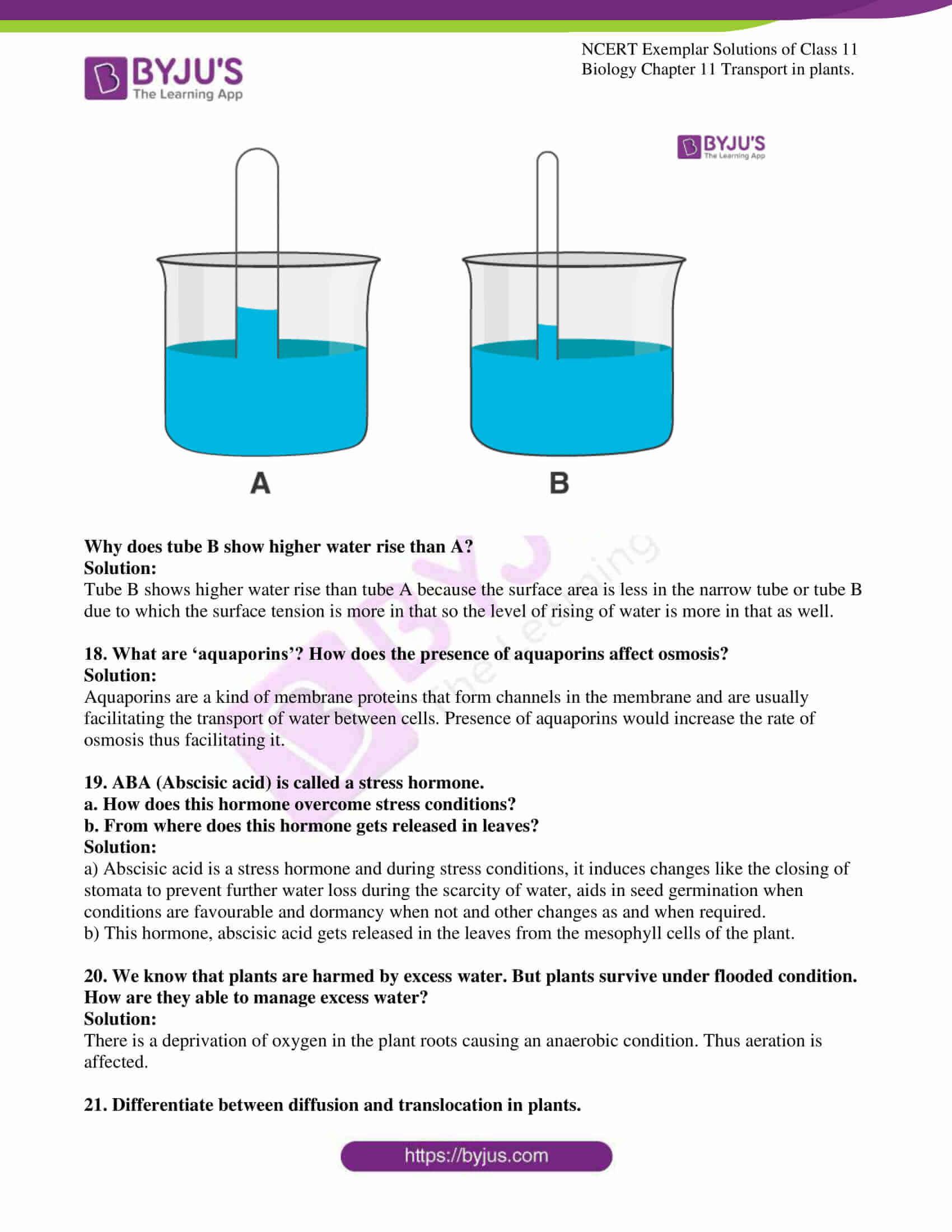 ncert exemplar solutions for class 11 bio chapter 11 11