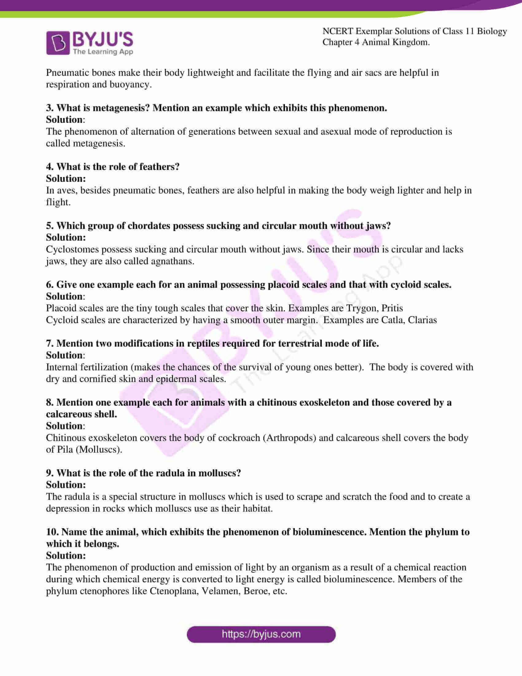 ncert exemplar solutions for class 11 bio chapter 4 04