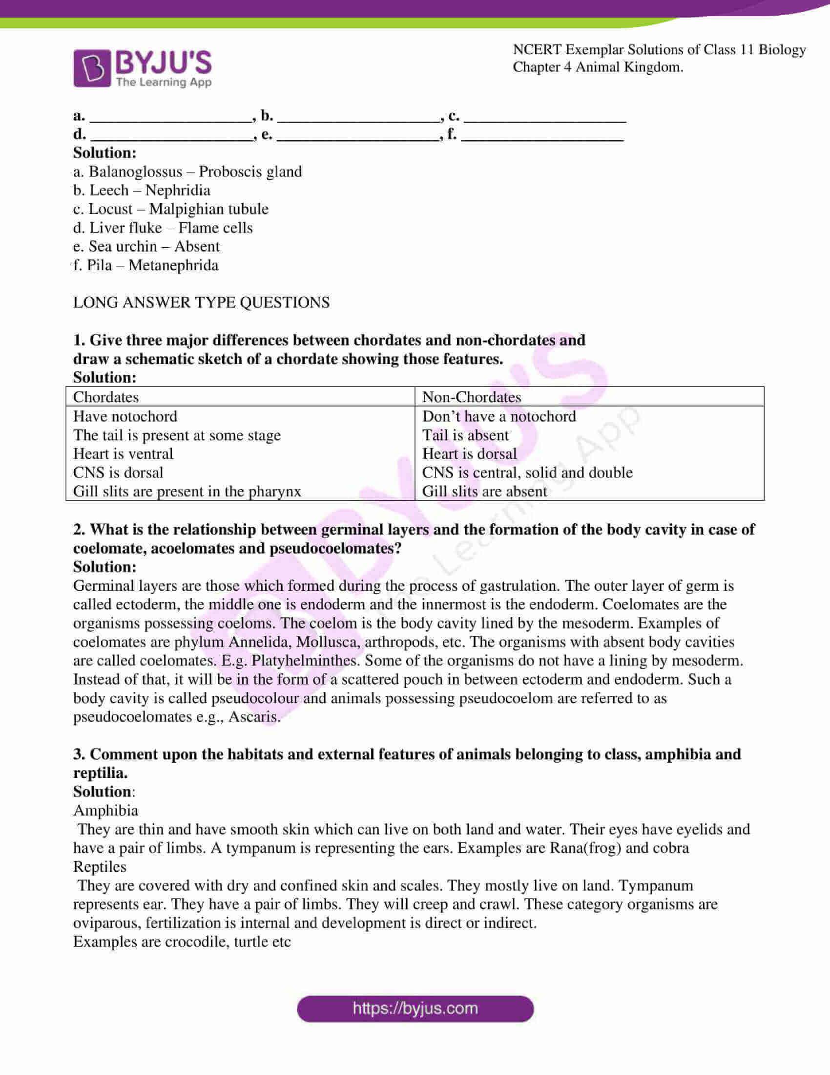 ncert exemplar solutions for class 11 bio chapter 4 10