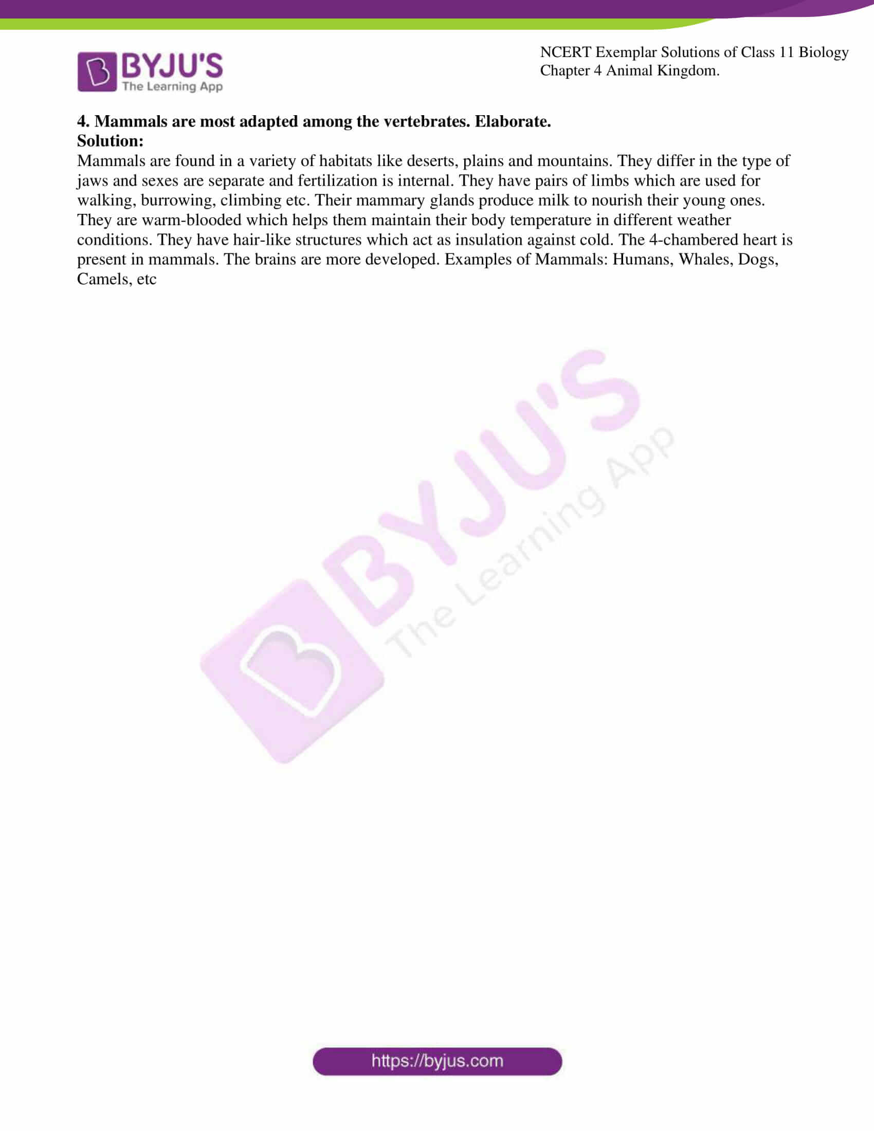 ncert exemplar solutions for class 11 bio chapter 4 11