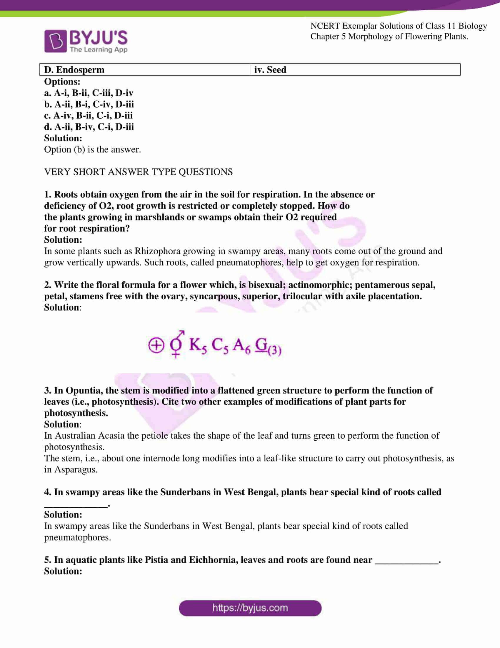 ncert exemplar solutions for class 11 bio chapter 5 03