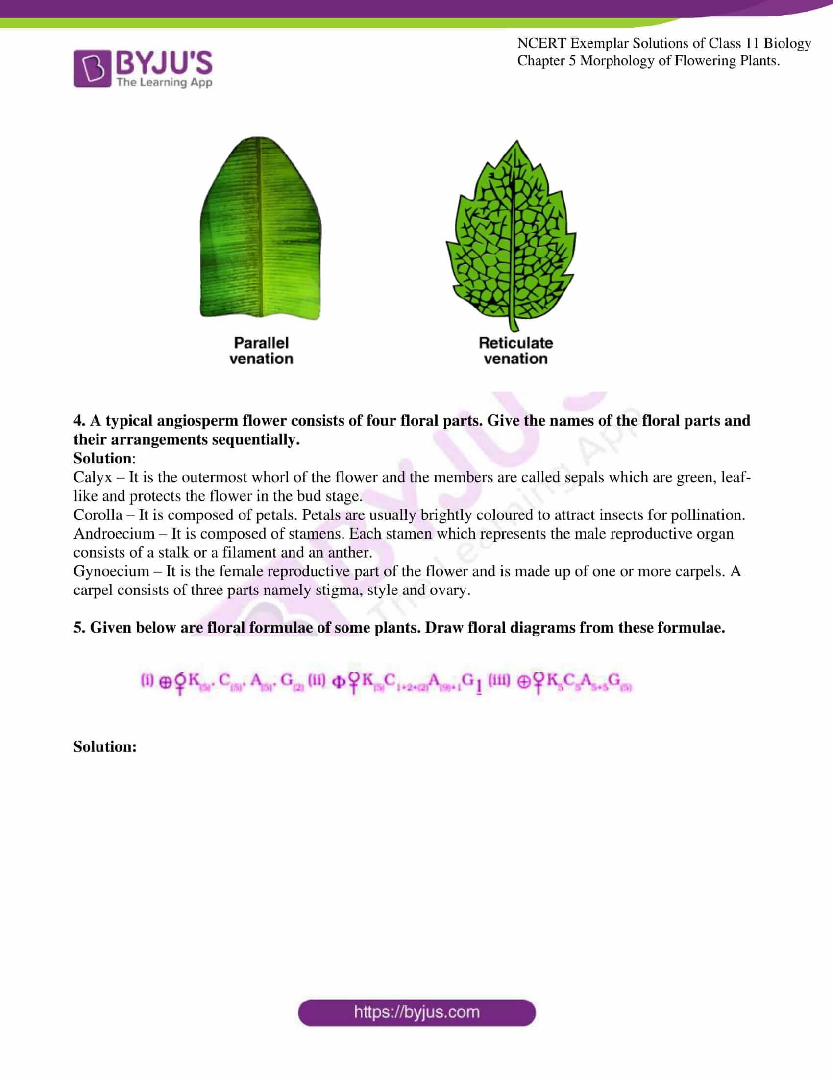 ncert exemplar solutions for class 11 bio chapter 5 06