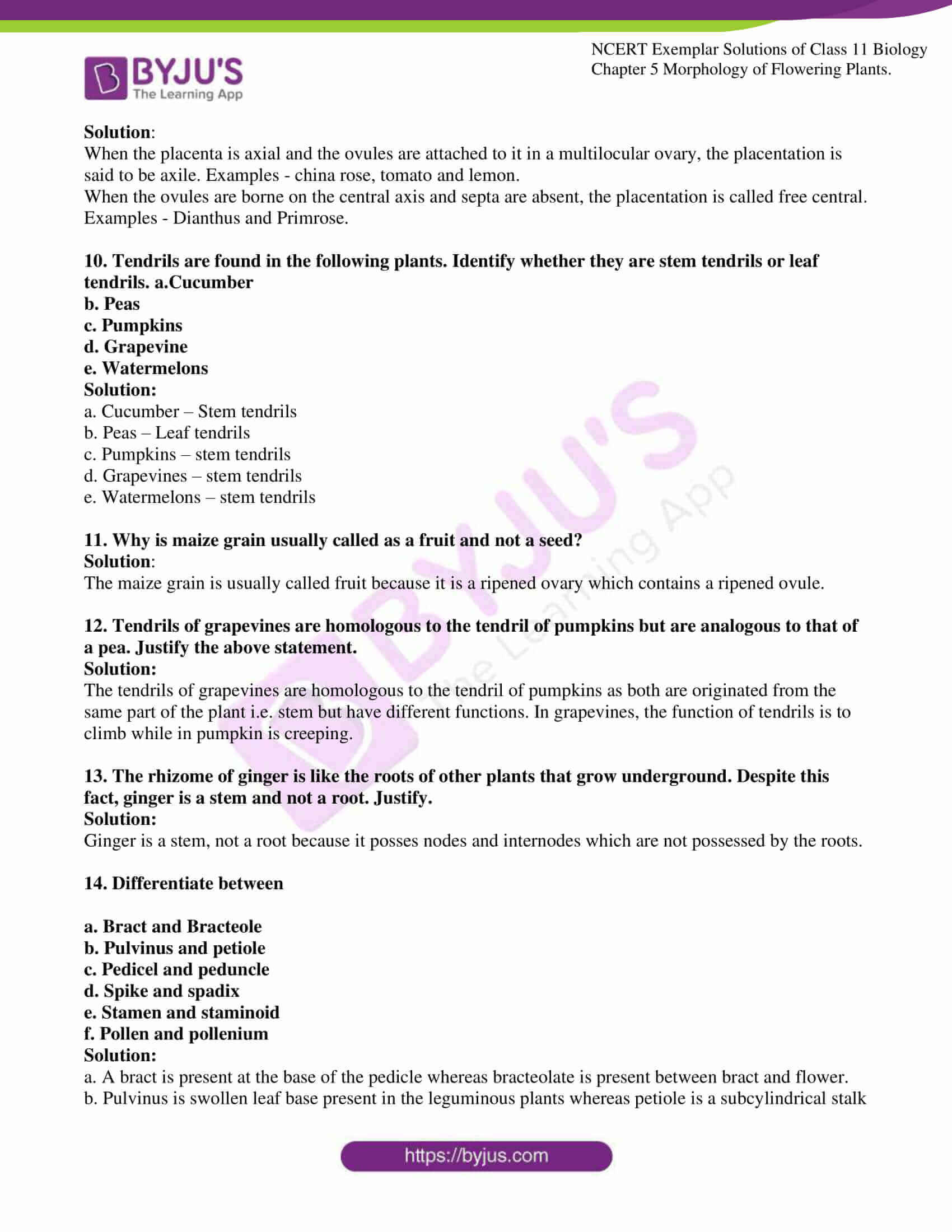 ncert exemplar solutions for class 11 bio chapter 5 08