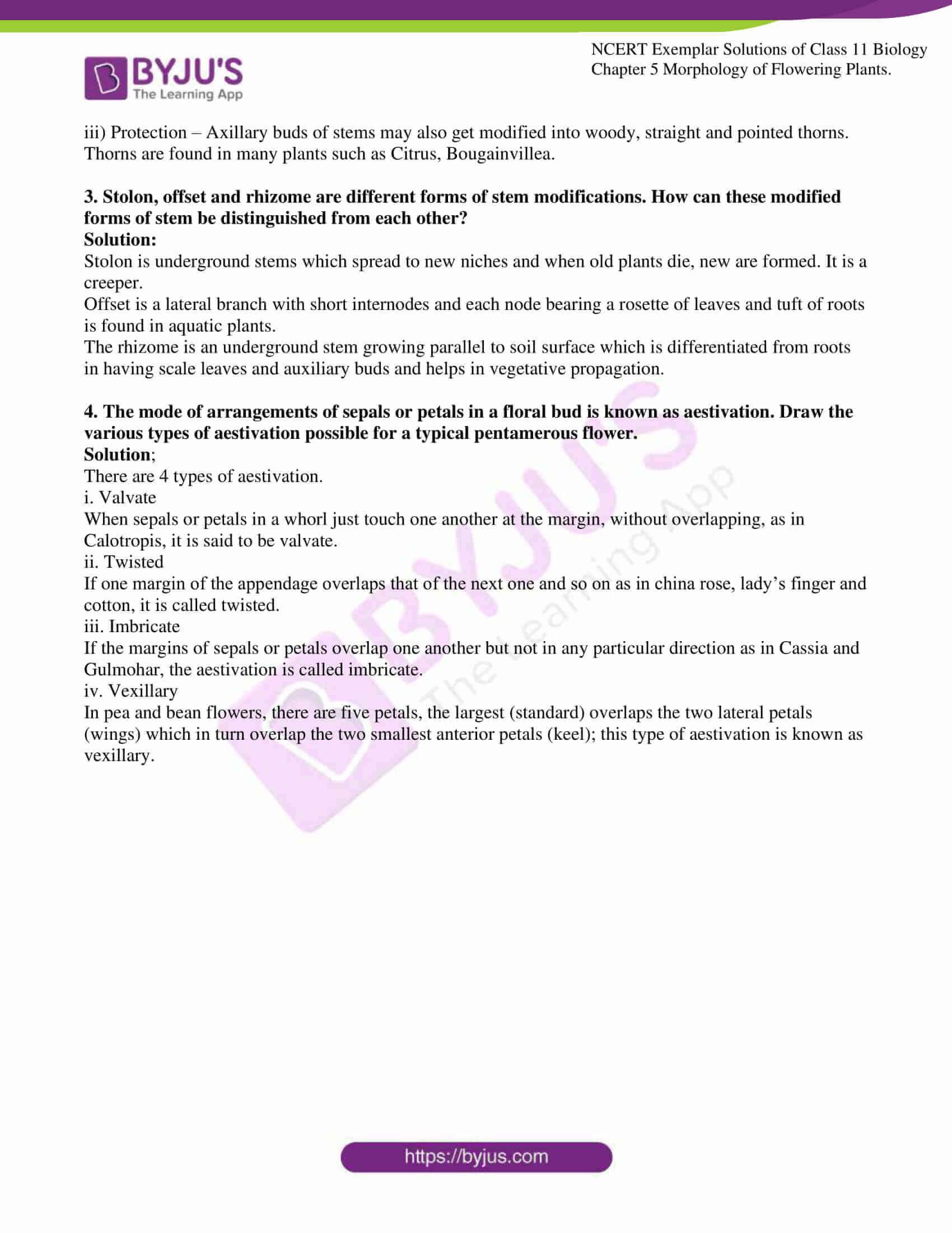 ncert exemplar solutions for class 11 bio chapter 5 10