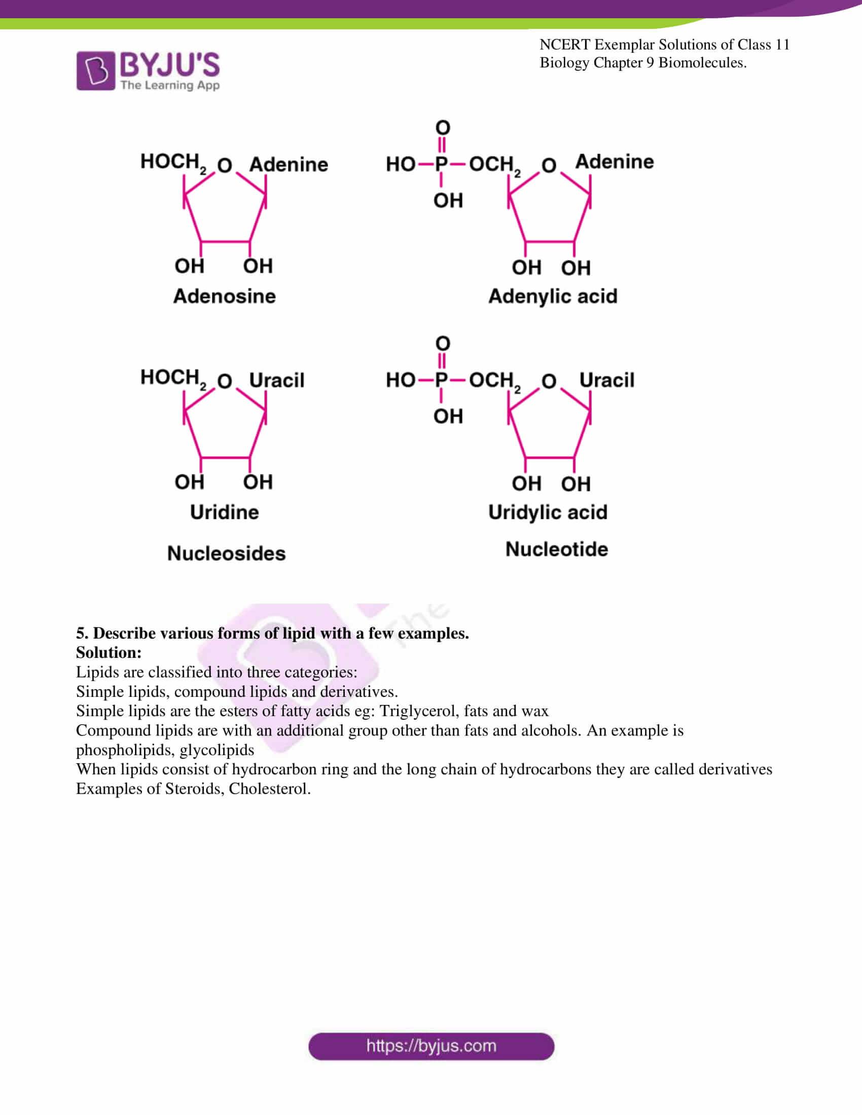 ncert exemplar solutions for class 11 bio chapter 9 9