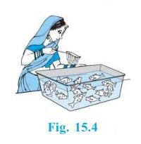 Ncert solutions class 10 chapter 15-1