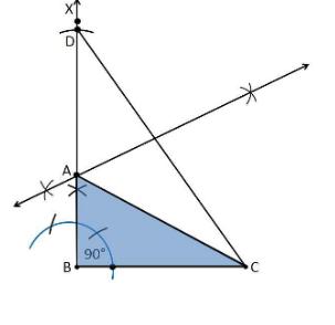 Ncert solutions class 9 chapter 11-17