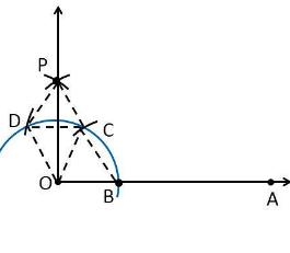 Ncert solutions class 9 chapter 11-2