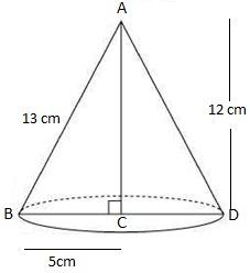 Ncert solutions class 9 chapter 13-15