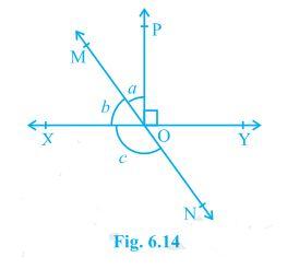 Ncert solutions class 9 chapter 6-2
