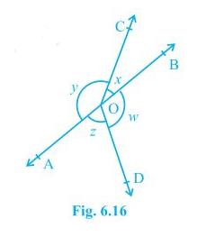 Ncert solutions class 9 chapter 6-4
