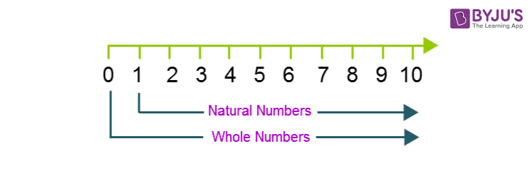 Whole numbers-Number line