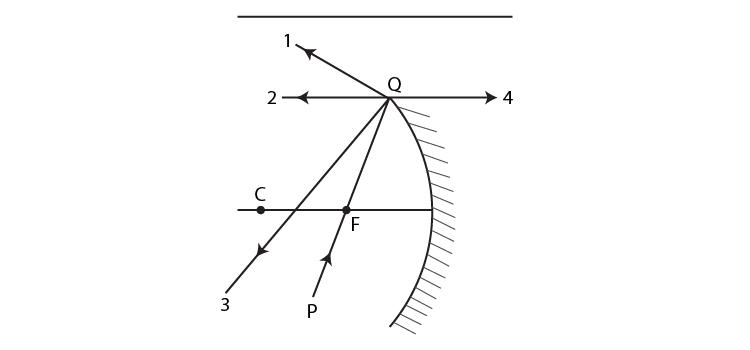 Exemplar Solutions Class 12 Physics Chapter 9 - 1