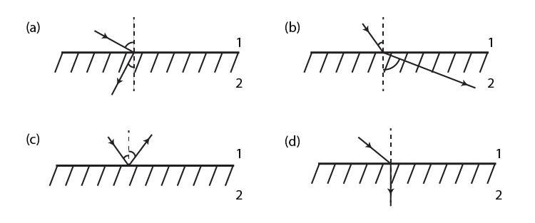 Exemplar Solutions Class 12 Physics Chapter 9 - 3