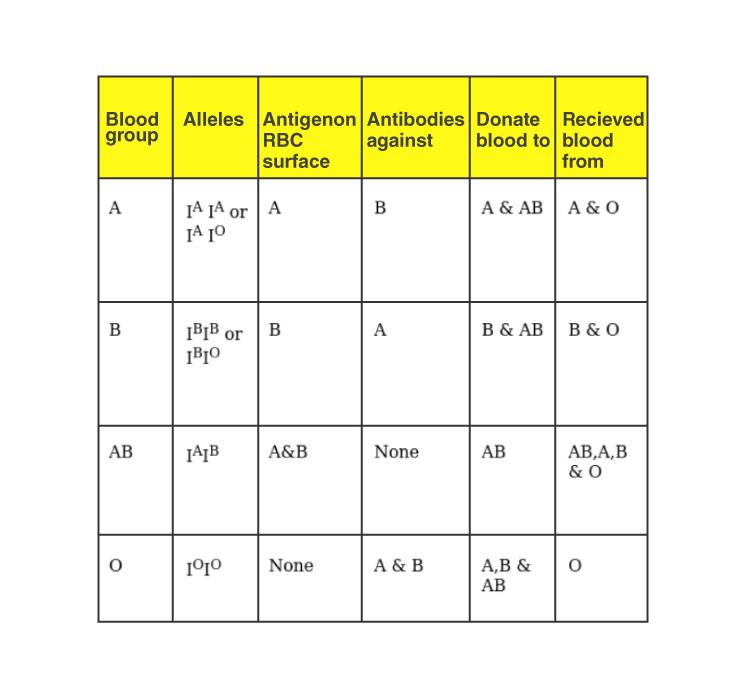 NCERT Exemplar Solution of Class 11 Biology Chapter 18 Body Fluids and Circulation-3