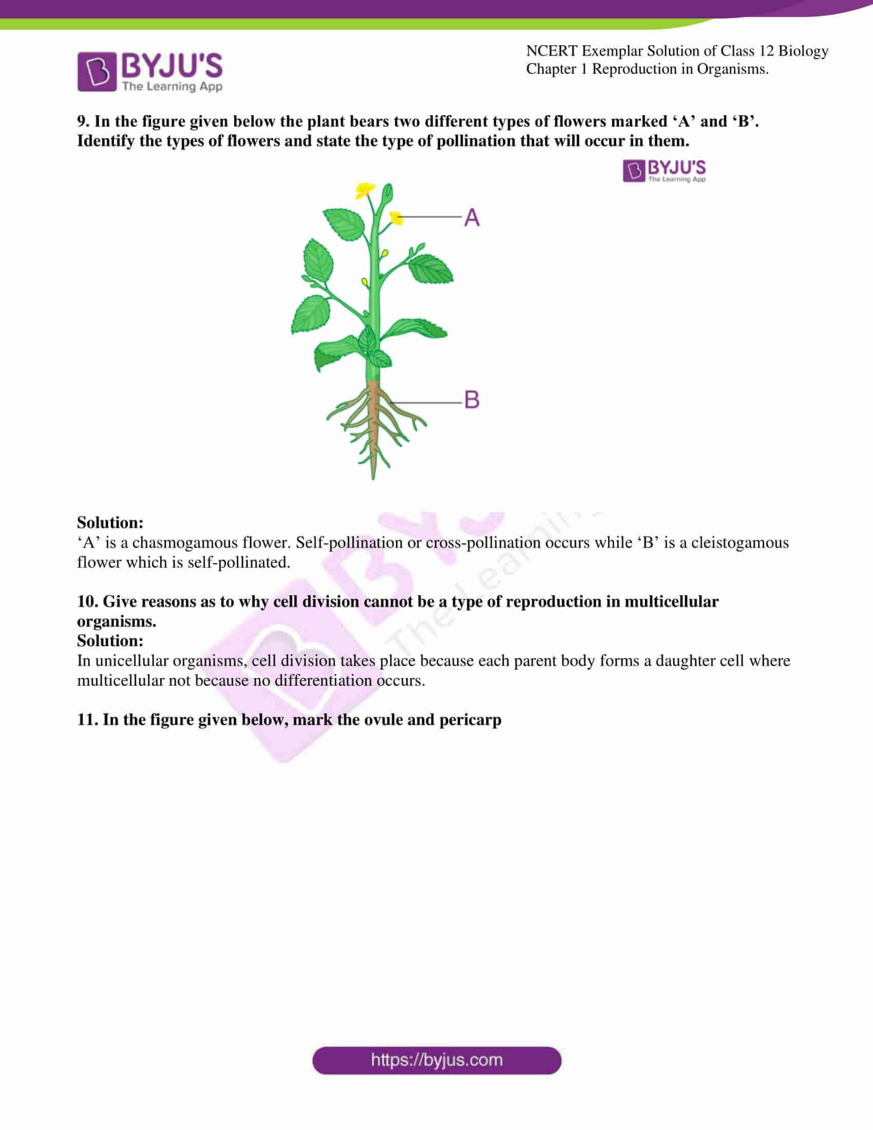 ncert exemplar solution of class 12 biology chapter 1 06