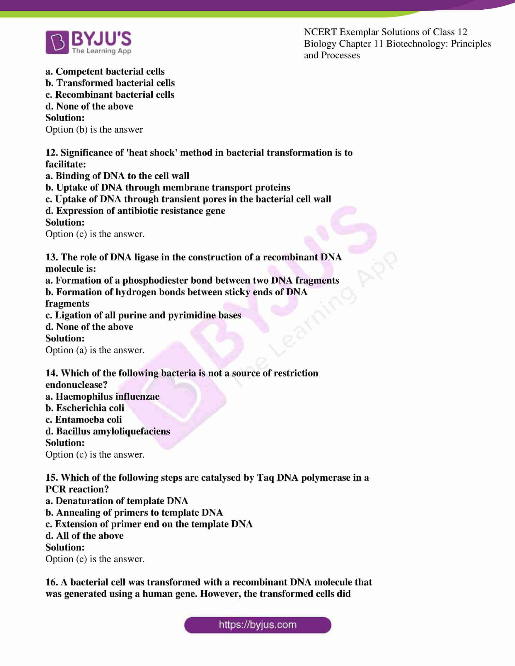 ncert exemplar solution of class 12 biology chapter 11 3