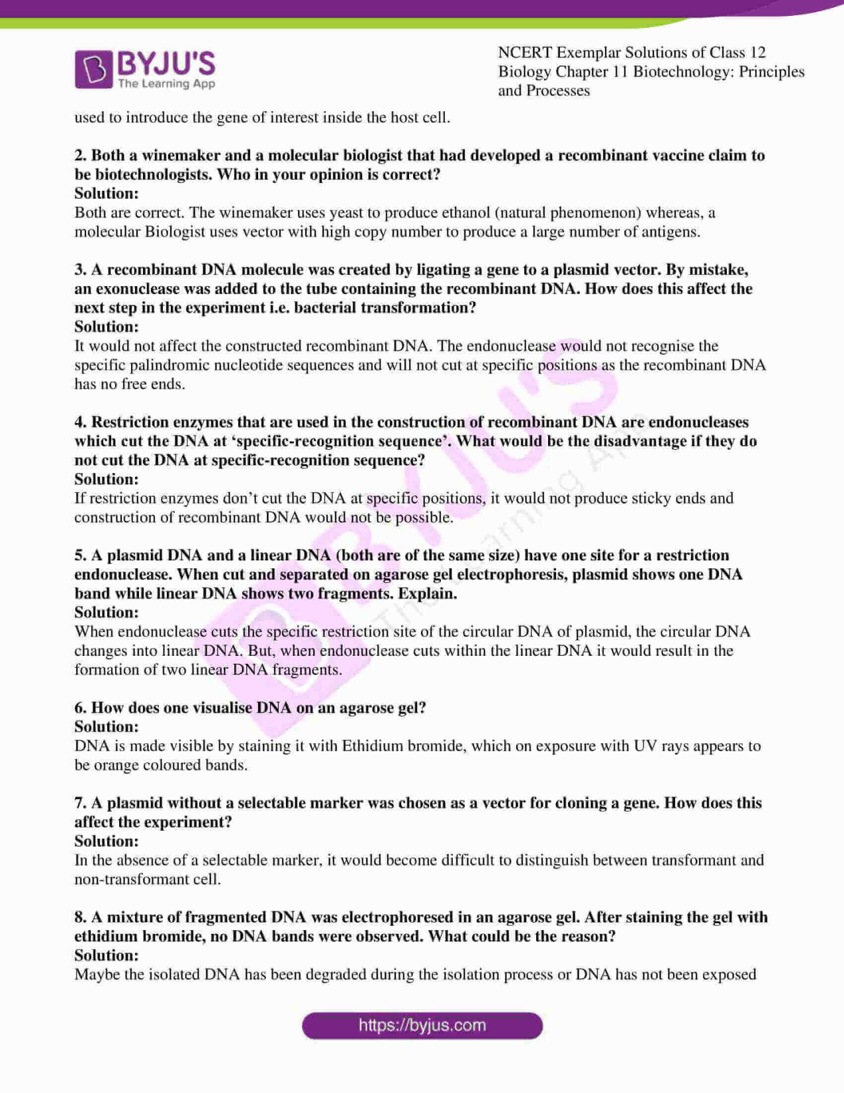ncert exemplar solution of class 12 biology chapter 11 6