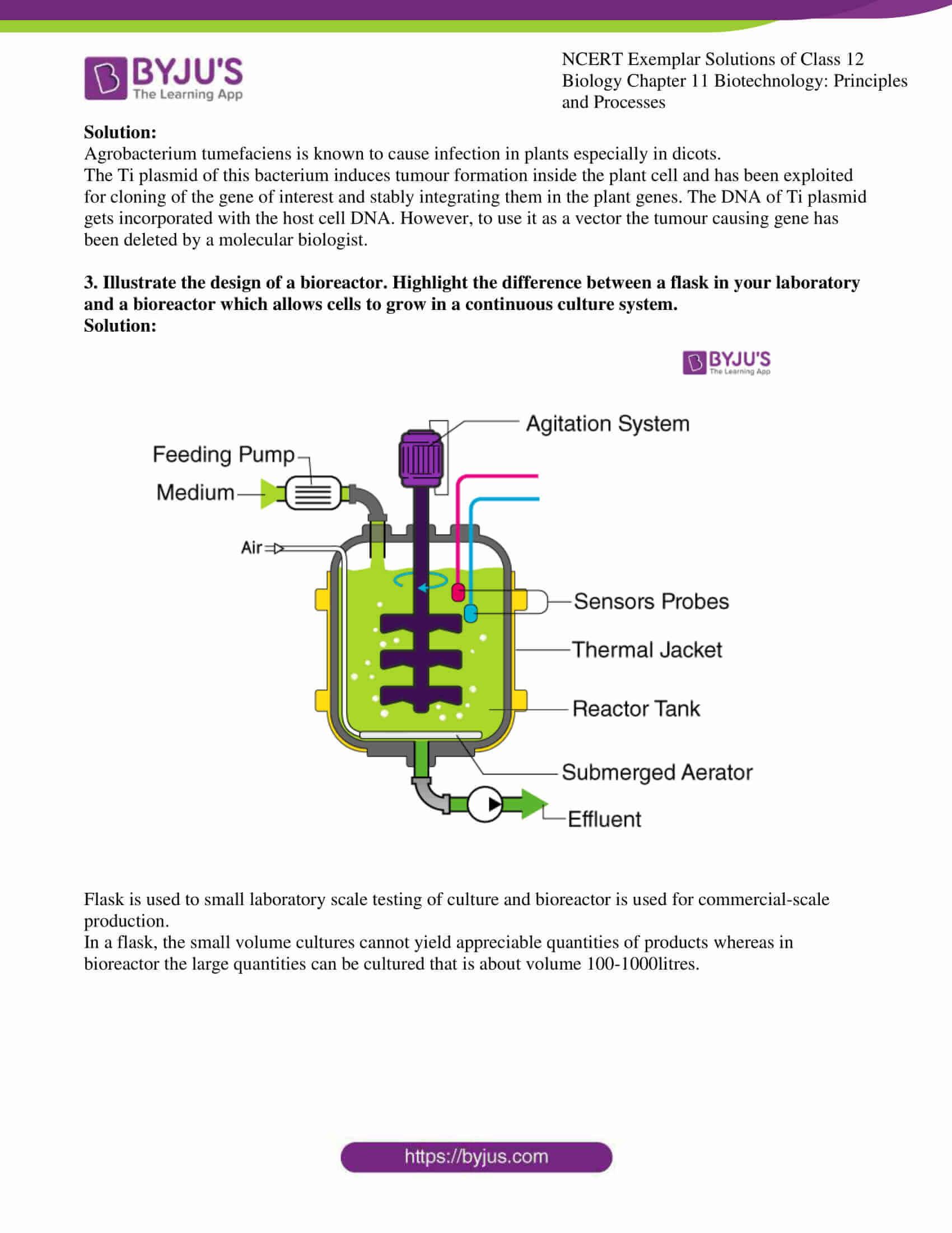 ncert exemplar solution of class 12 biology chapter 11 9