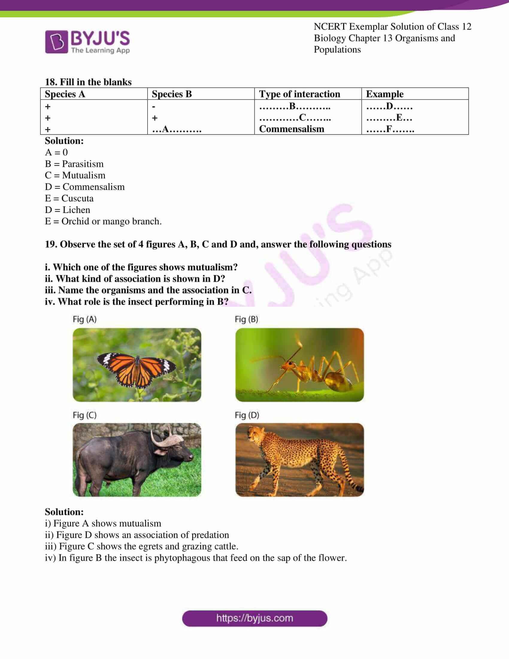 ncert exemplar solution of class 12 biology chapter 13 11