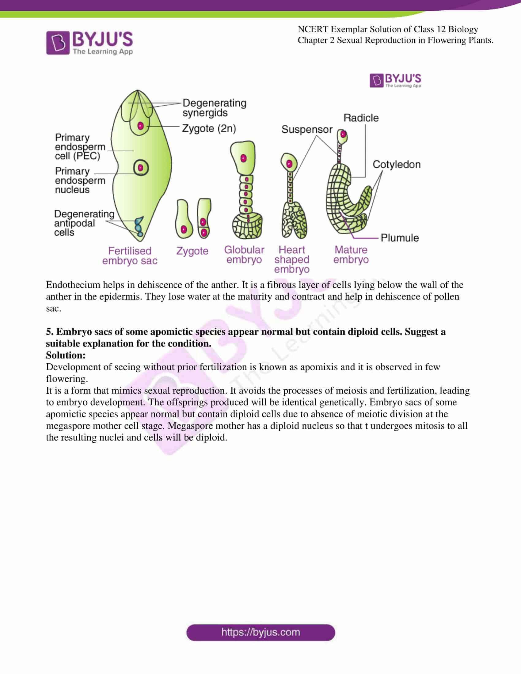 ncert exemplar solution of class 12 biology chapter 2 14