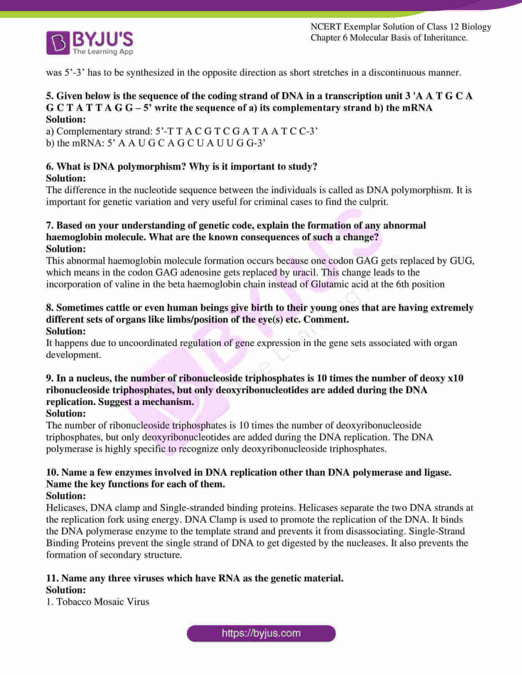 ncert exemplar solution of class 12 biology chapter 6 07