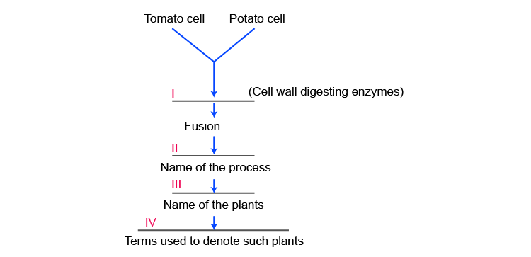 NCERT Exemplar Solution of Class 12 Biology Chapter 9 Strategies for Enhancement in Food Production-1