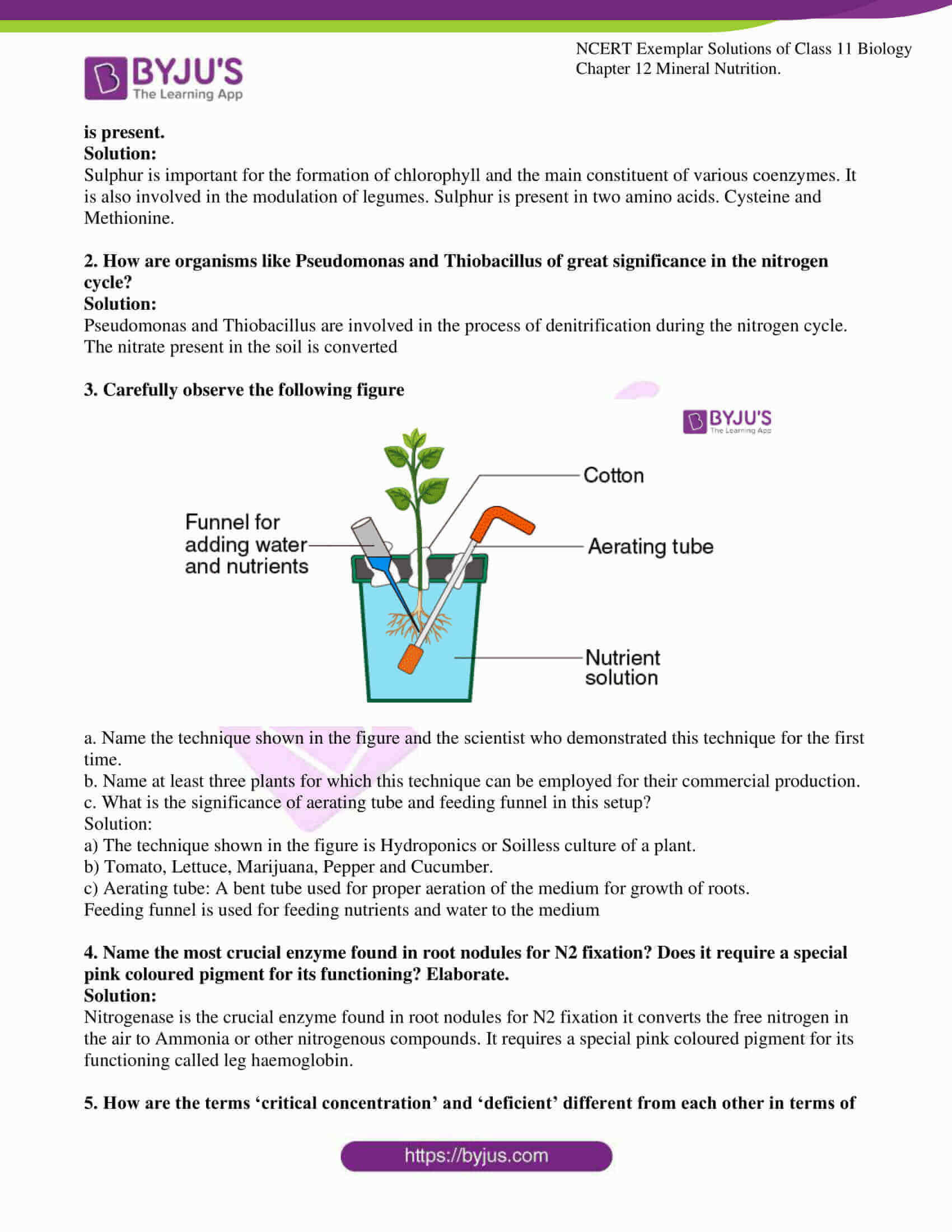 ncert exemplar solutions class 11 biology chapter 12 5