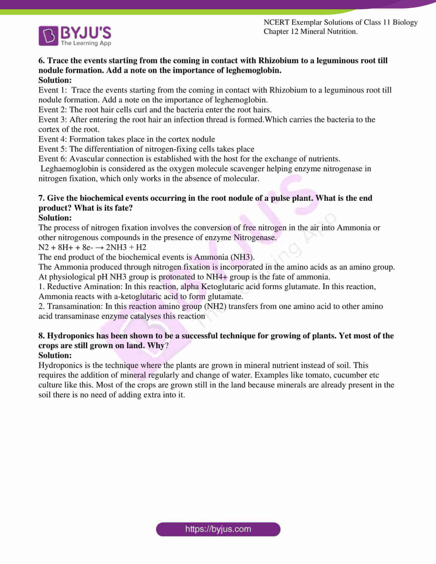 ncert exemplar solutions class 11 biology chapter 12 8