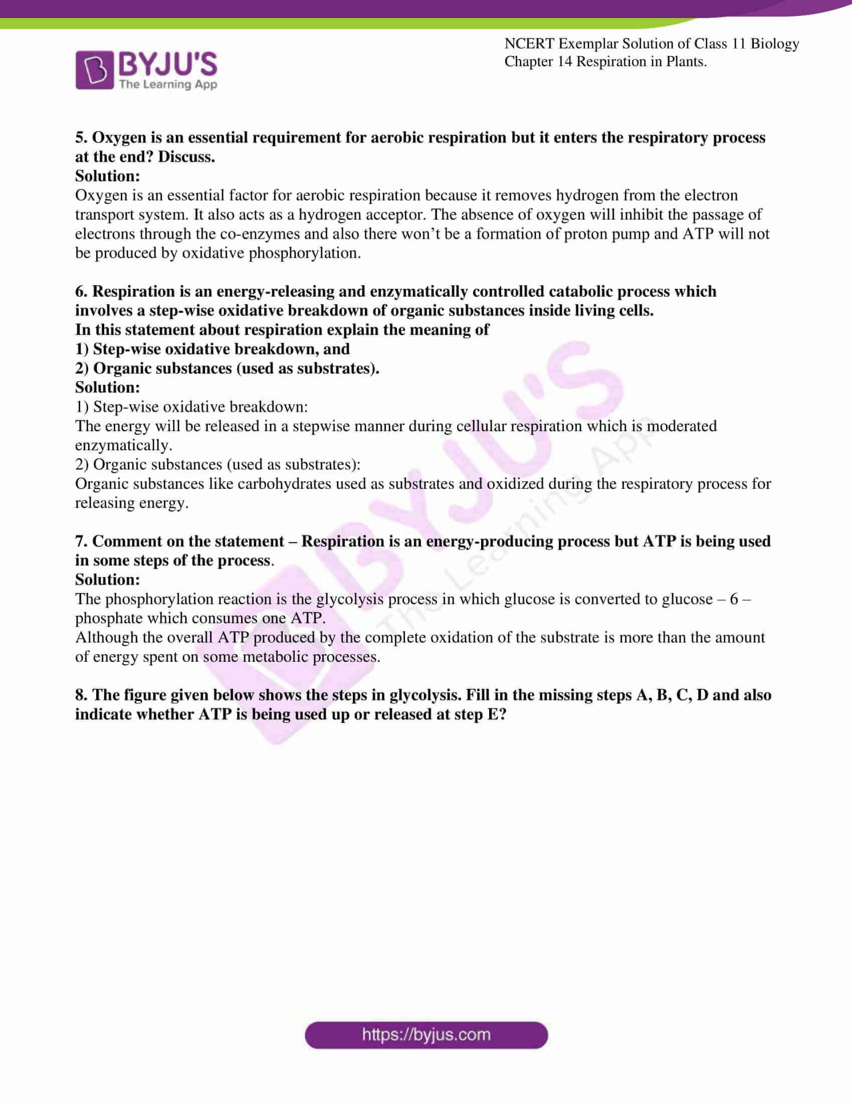 ncert exemplar solutions class 11 biology chapter 14 05