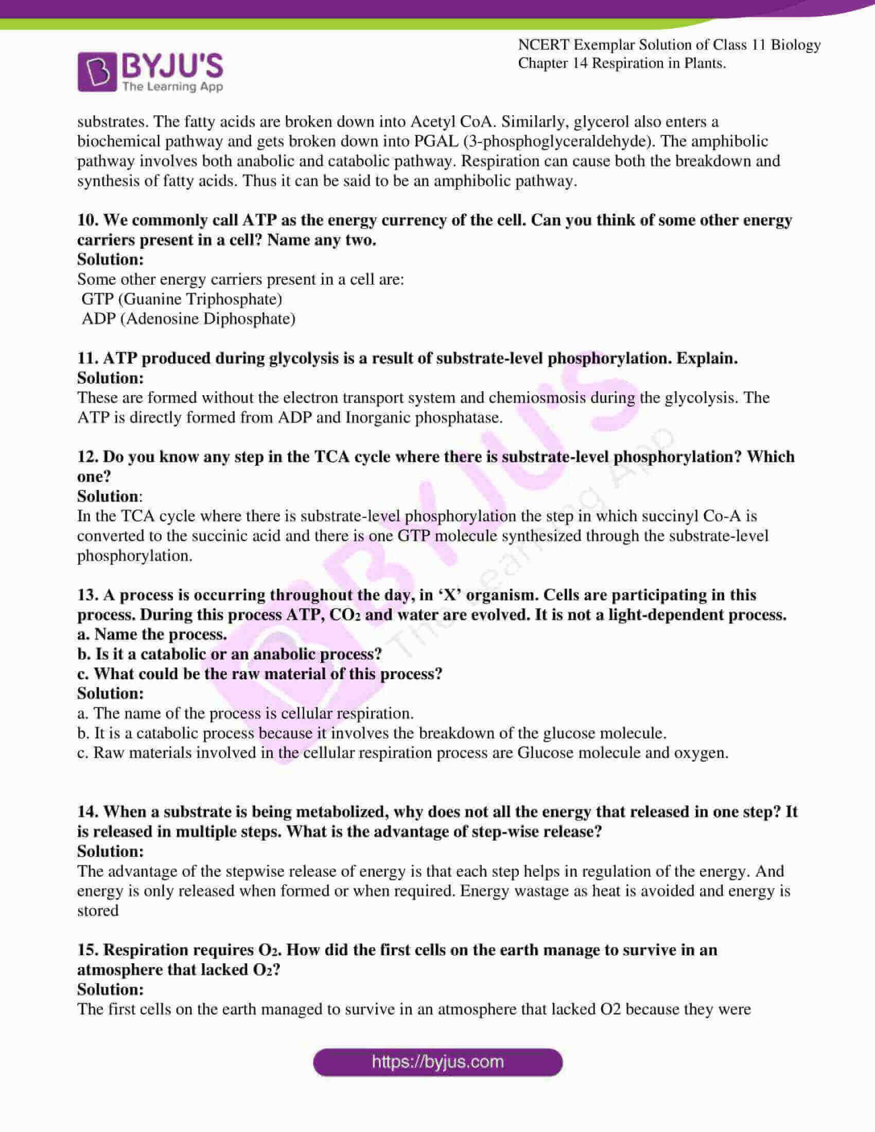 ncert exemplar solutions class 11 biology chapter 14 08