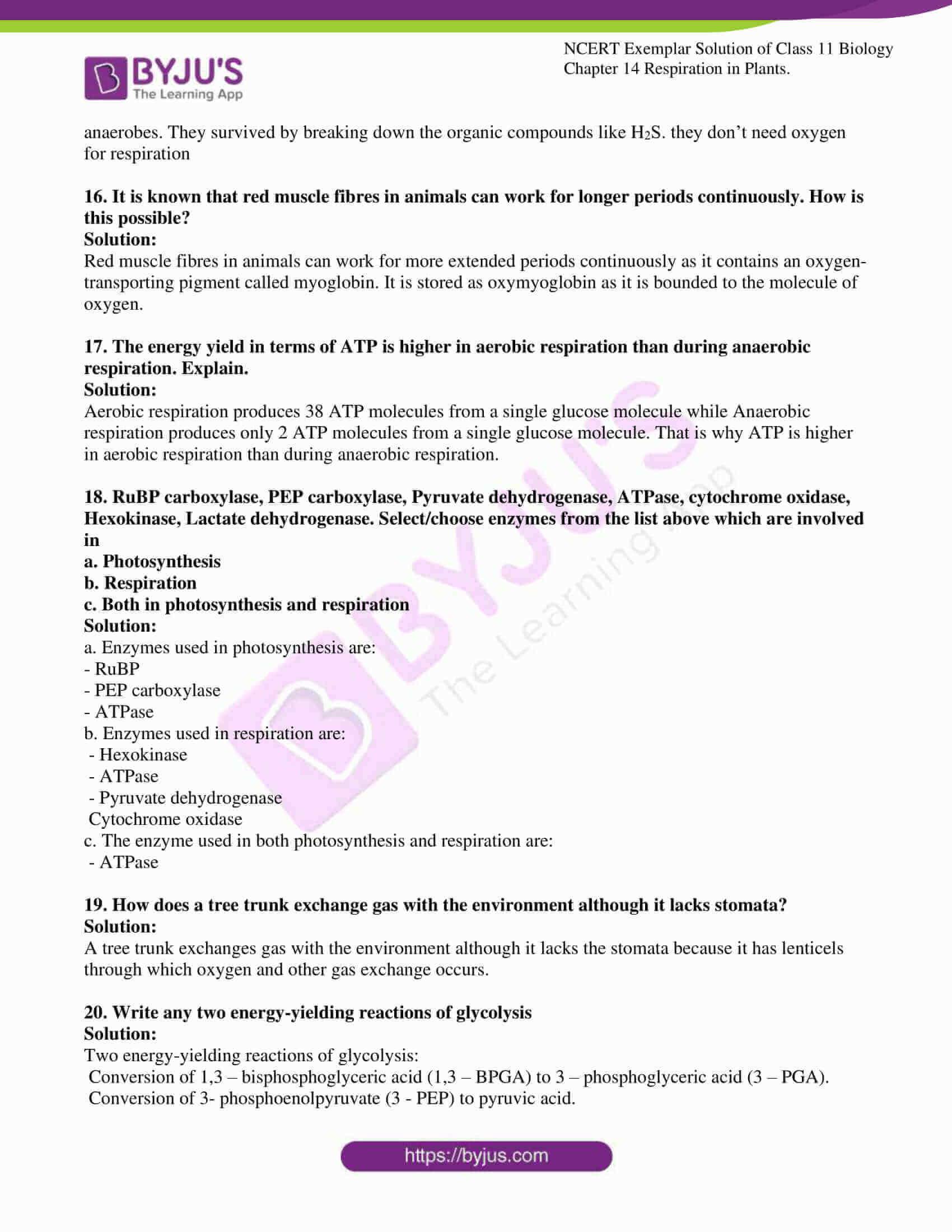 ncert exemplar solutions class 11 biology chapter 14 09