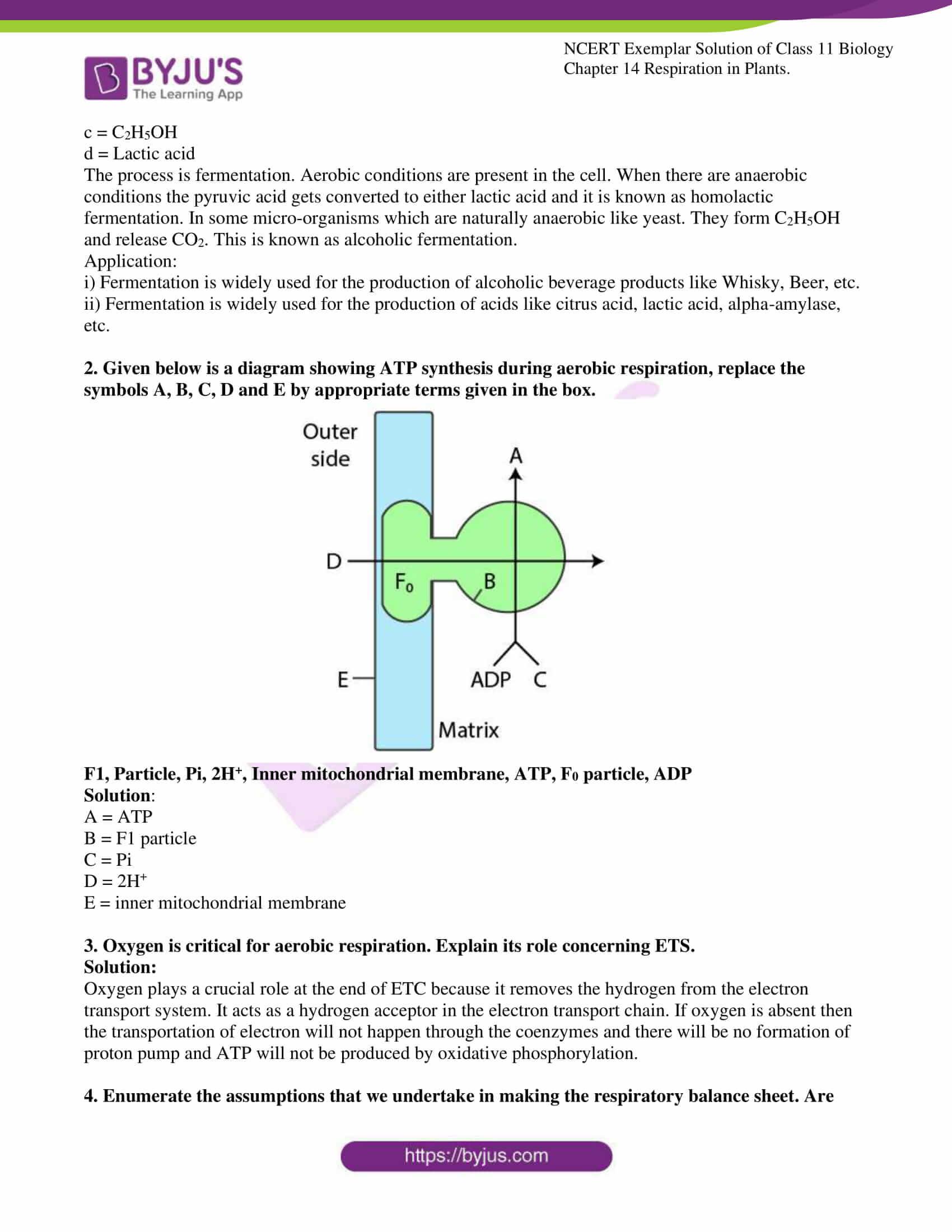 ncert exemplar solutions class 11 biology chapter 14 11