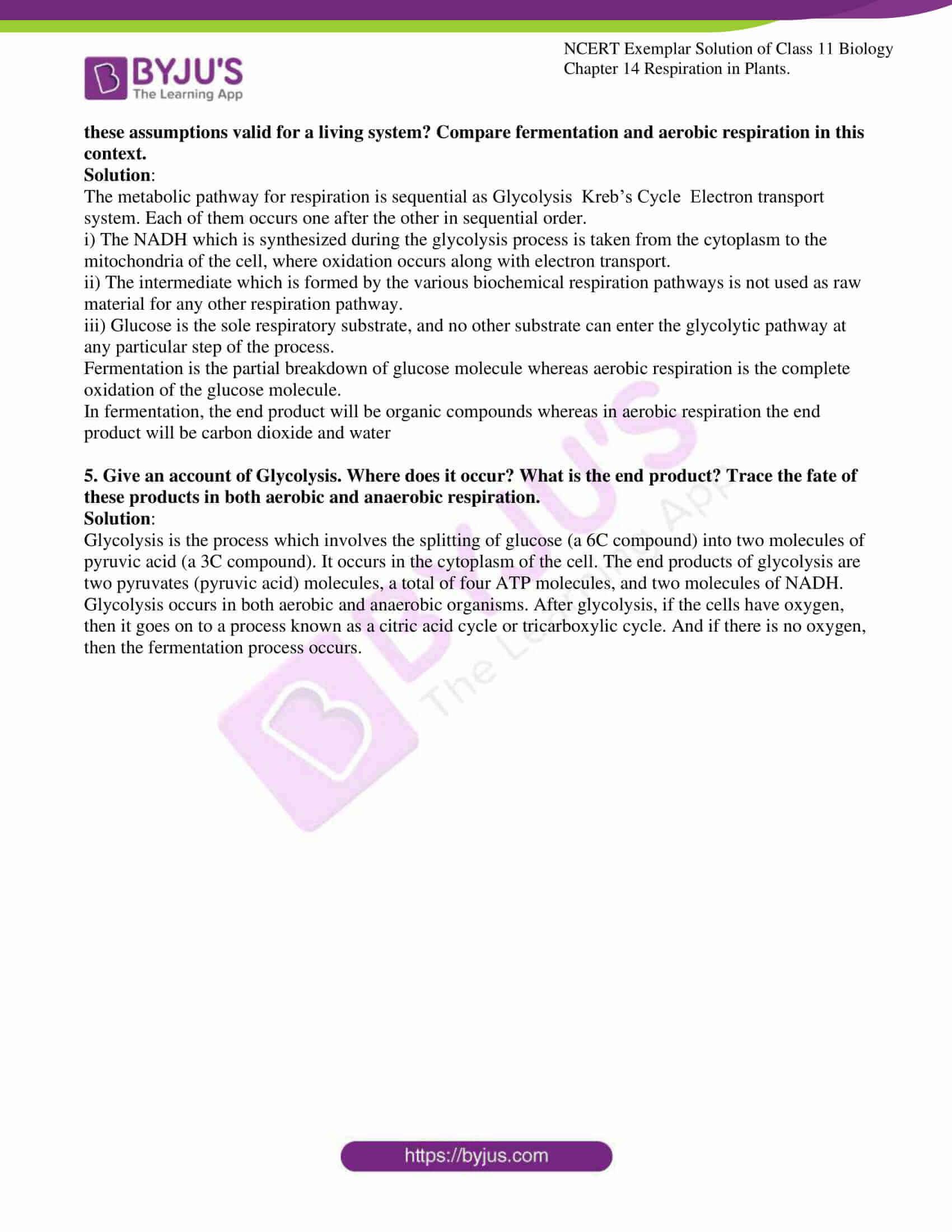 ncert exemplar solutions class 11 biology chapter 14 12
