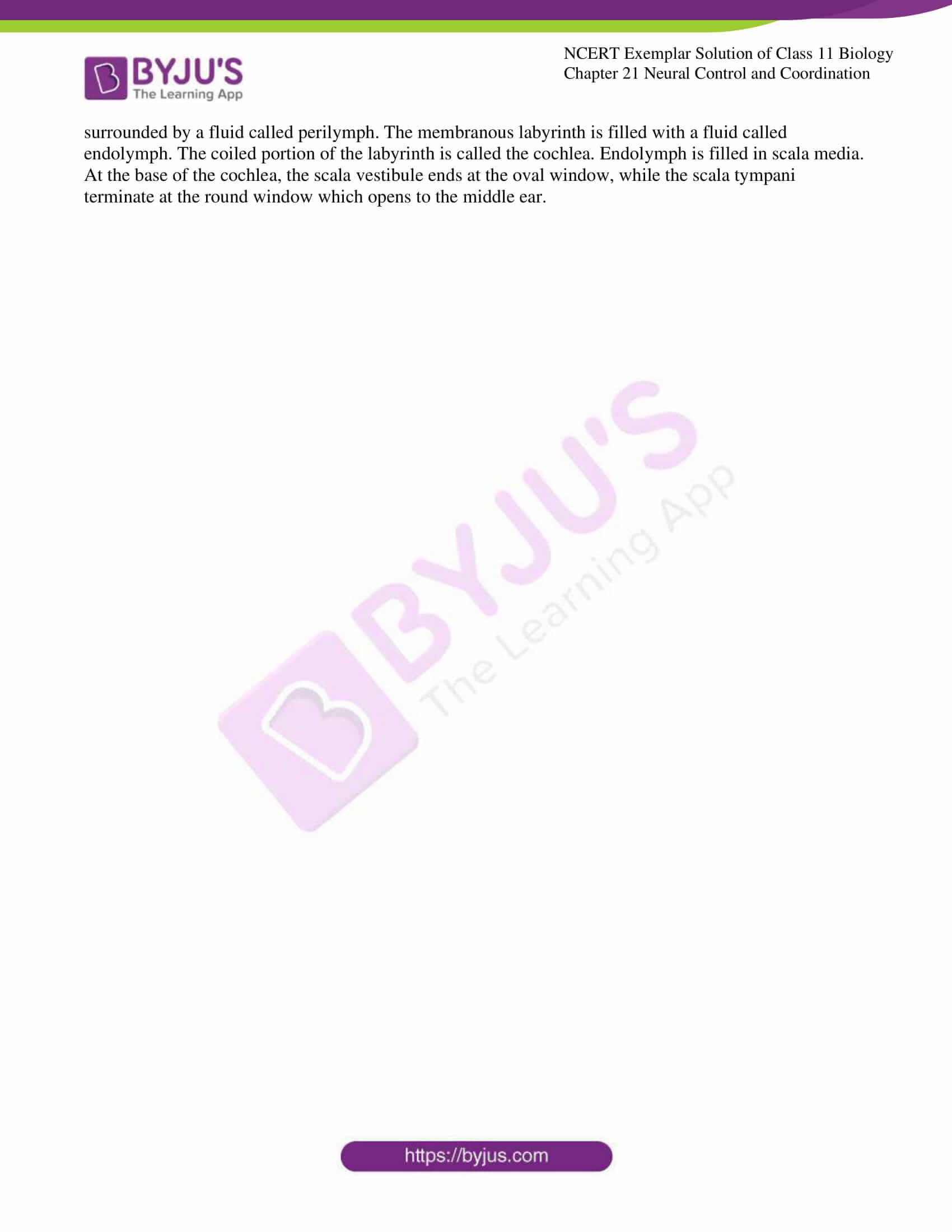 ncert exemplar solutions class 11 biology chapter 21 10
